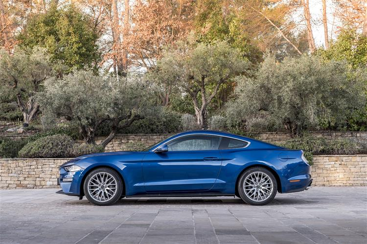 MUSTANG FASTBACK SPECIAL EDITIONS Image